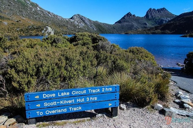 Cradle Mountain Guided Walk with Gourmet Hamper