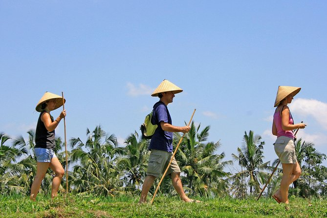 Private Balinese Lifestyle Tour