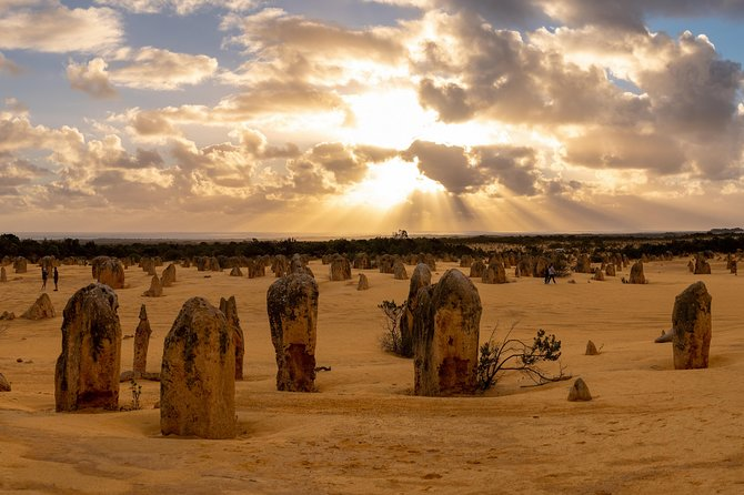 Pinnacle Desert Sunset and Night-time Stargazing Tour from Perth