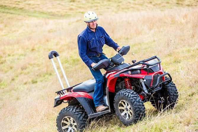 Full Day Quad Bike, Game Drive Experience Incl Private Hotel Pickup and Dropoff