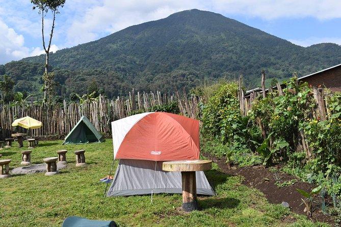 Camping at Bisoke Beer Garden