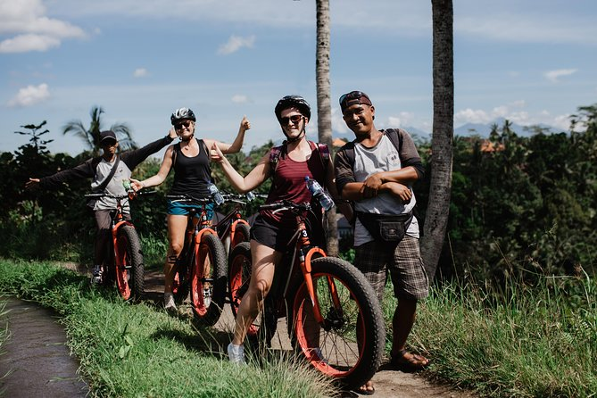 Private Fat Tire E-Bike Tour in Ubud
