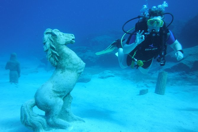 Local Guided Dives (for certified/licensed divers)