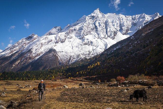 20 days Manaslu Rupina La Pass Homestay Trek