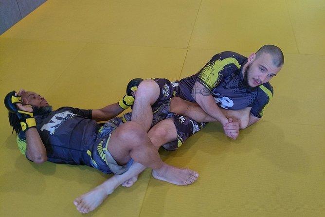 MMA Mixed Martial Arts Course