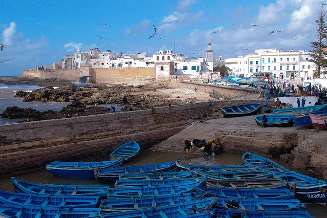 Marrakech shared day trip to Essaouira photo 3