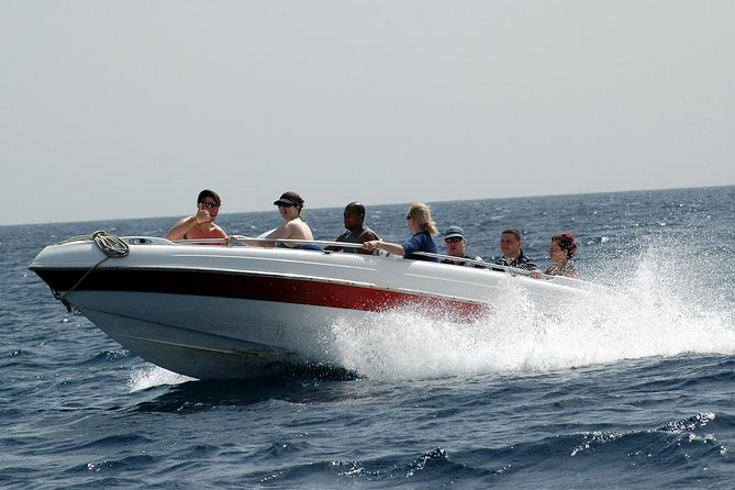 4 Hours Snorkeling With the Dolphins by a Speed Boat - Hurghada