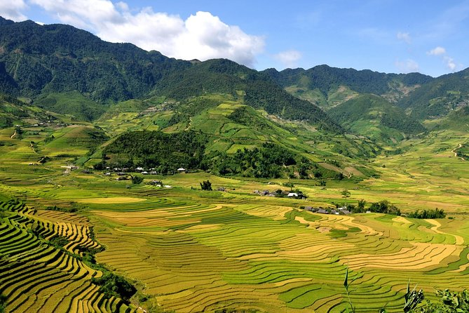 5days 4nights Lan Ha Bay-Sapa-Ninh Binh=>Free Airport Transfer &Street food tour