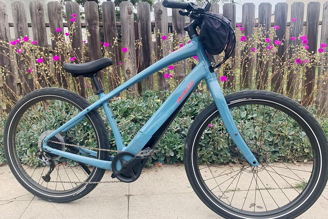 Half Day Beach Cruiser Ebike Rental