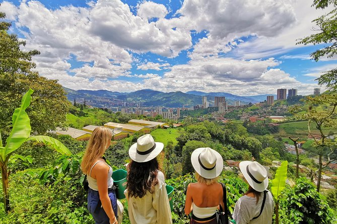 Private Coffee Farm & Horseback Riding Tour: All in one great day