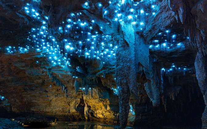 Footwhistle Glowworm Cave