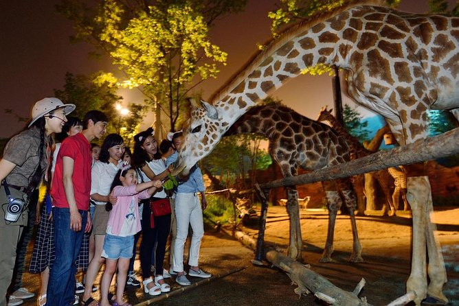 Everland Shuttle Bus Ticket Roundtrip From Seoul photo 4