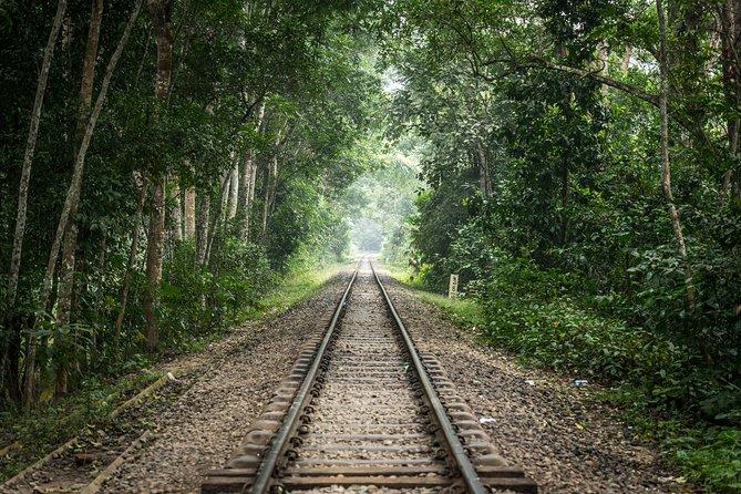 Trip to Sreemangal