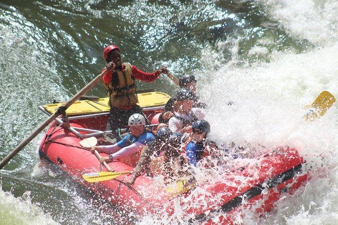 Victoria Falls: Whitewater Rafting + Chobe Safari Combo