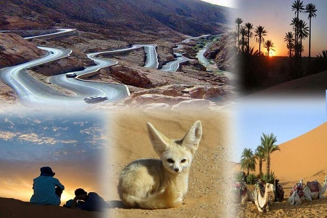 fes to marrakech desert tour 3 days