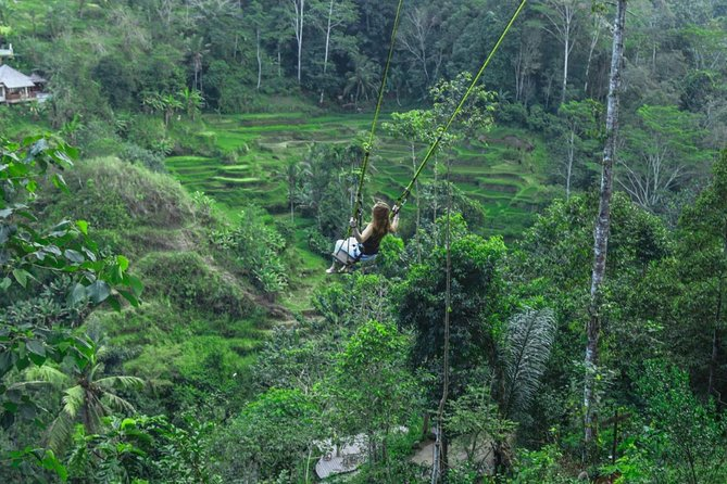 Ubud culture & Nature Tour photo 12