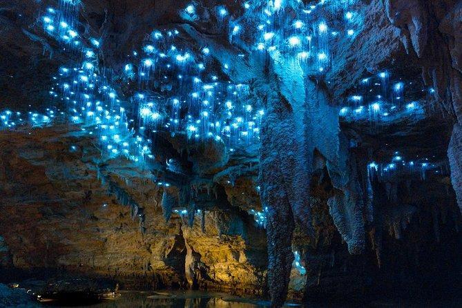PRIVATE TOUR: From Tauranga: Waitomo Glow-Worm Caves' Natures Wonderland