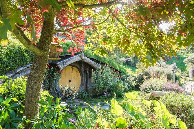 PRIVATE TOUR: From Tauranga: 'Hobbiton Movie Set' Cruise Ship Tour