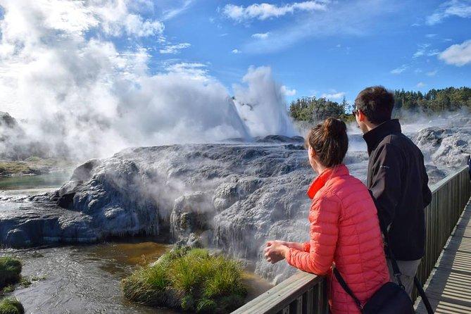 """From Tauranga. Private Day Tour. """"Te Puia"""" Geysers. Rotorua"""