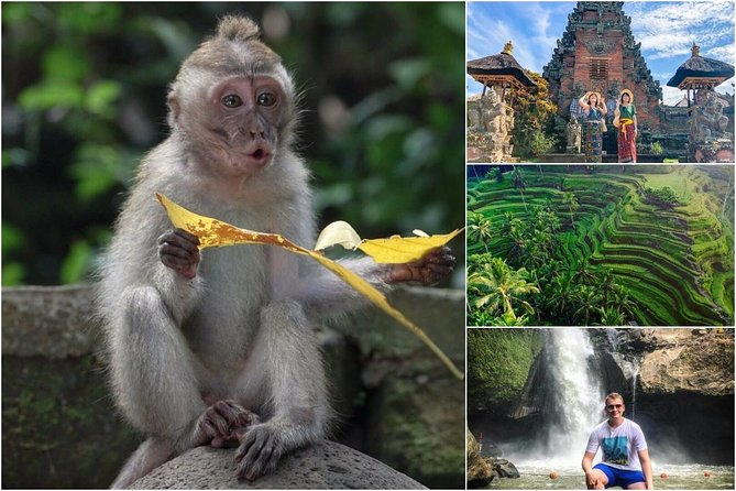 Explore Ubud with Local Expert Driver-Guide