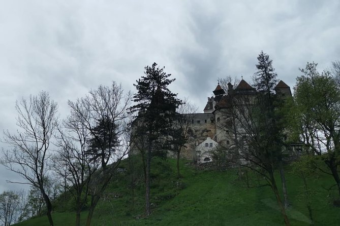 1 Day Castles Tour - Sinaia and Bran photo 9