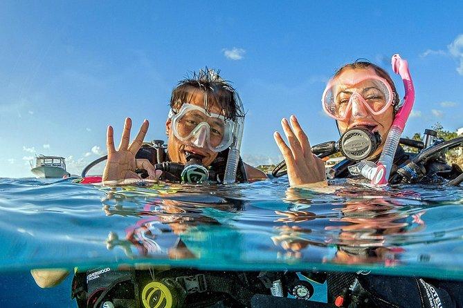 スキューバダイビング体験を発見する