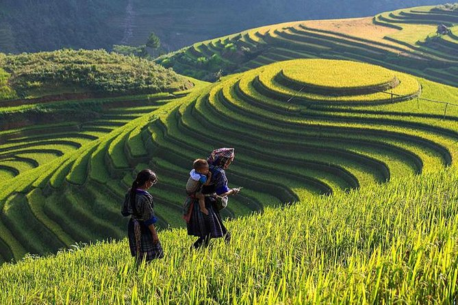 Overnight Sapa Tour 2 Days: Trekking, Hotel; Local tour guide; Small group
