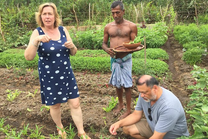 Sri Lankan Rice and Curry Cookery Demonstration—Galle photo 4