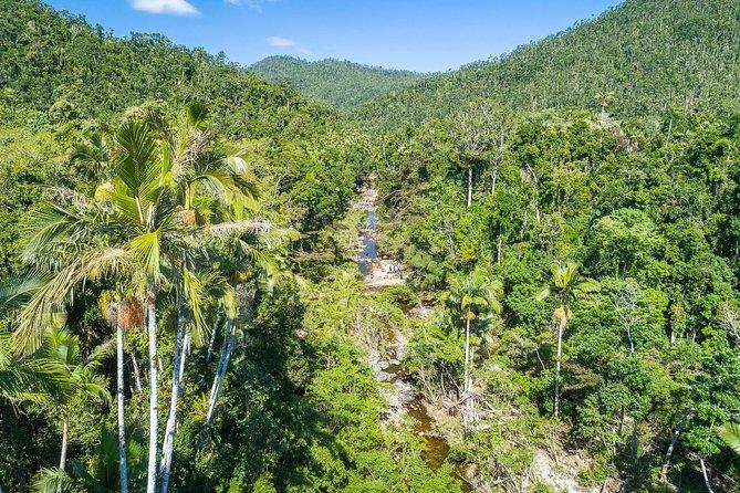 Whitsunday Segway Rainforest Discovery Tour