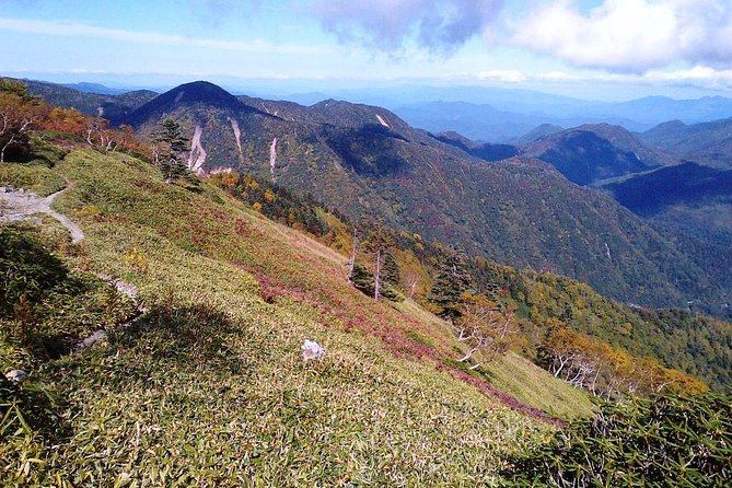 Mt. Miyanoura Hiking Tour in Yakushima Island with Licensed Local Guide photo 3