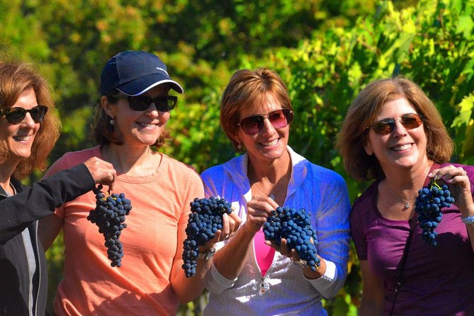 Small-Group Truffle Hunting & Wine Tour from Florence with Farm Lunch - Ultimate