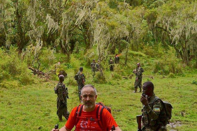 9 Days Rwanda Budgeted Safari - Gorillas & Wildlife Tours