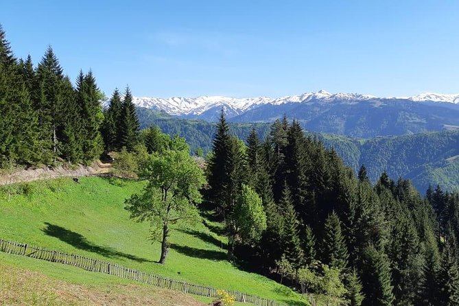 Tago - Skhalta Hiking Trip