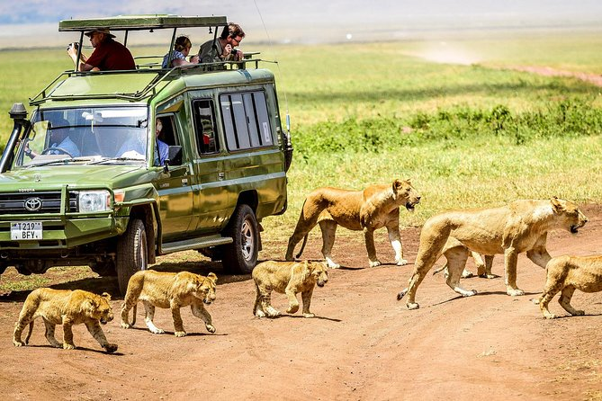 3 Days Northern Safari - Manyara, Ngorongoro Crater and Tarangire National Parks