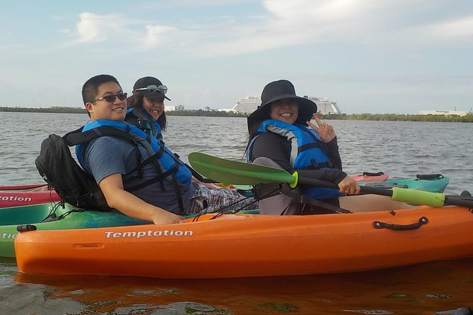 Fully Guided Kayaking Backwater Manatee and Dolphin Tour photo 7