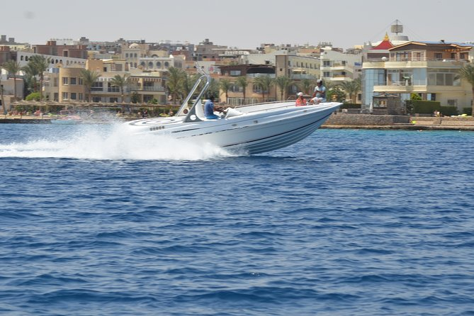4 Hours Snorkeling With the Dolphins by a Speed Boat (Private) - Hurghada photo 16
