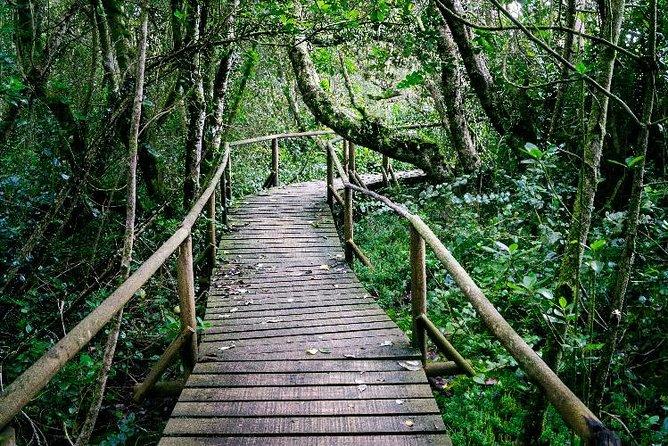 Fray Jorge National Park and Valle del Encanto
