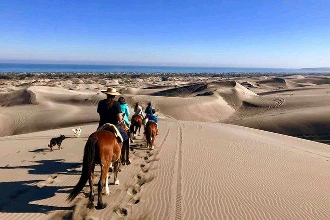 Private Shore Excursion From Valparaiso: Beach Horseback Ride & Viña del Mar