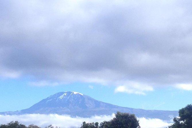 Climb Kilimanjaro 7 Days Machame Route