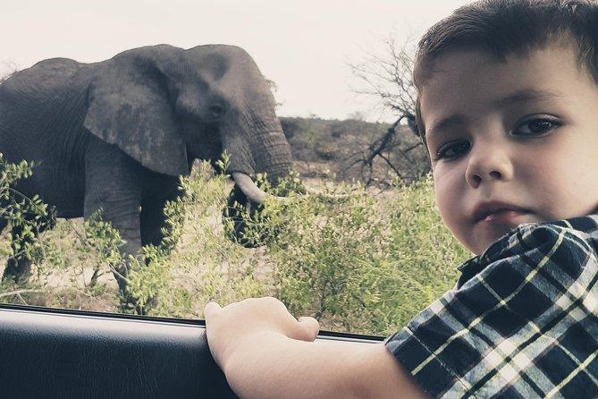 Kids on Safari (photo credit: Diana Becker)