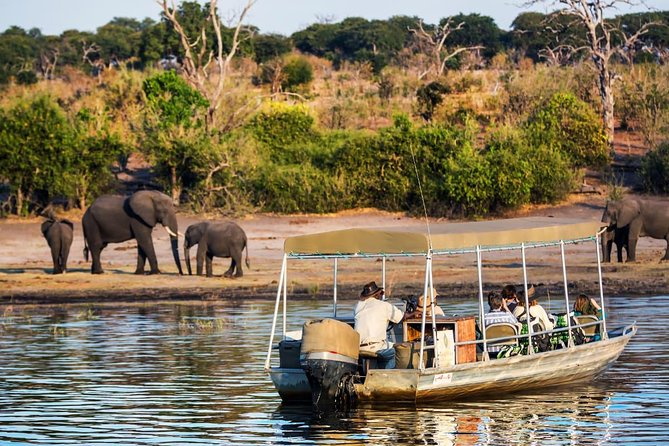Chobe Day Trip in Botswana