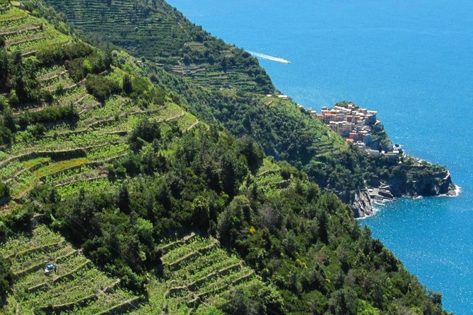 Guided hike in the heart of Cinque Terre