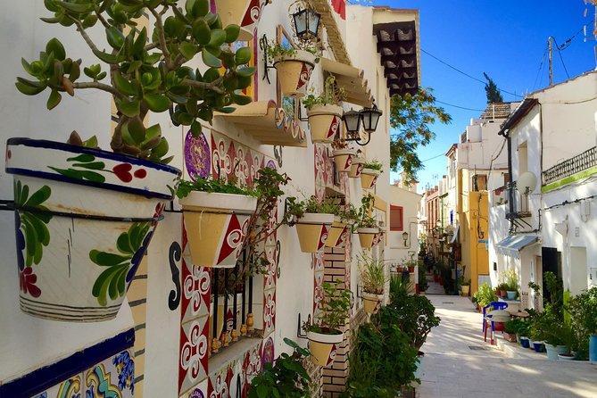 Private Half-Day Walking Tour of Alicante
