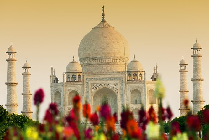 Private one day city tour of agra with yoga