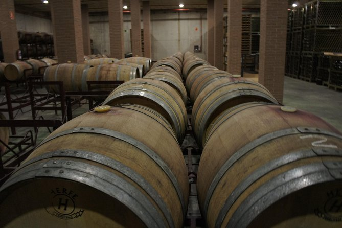 Winery Tour and Wine Tasting in Madrid