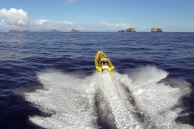 2 horas ida y vuelta en Vestmannaeyjar en un barco RIB