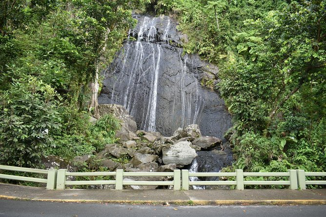 El Yunque Tropical Rainforest