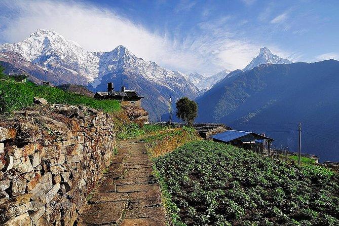 9 days Kids Friendly Lower Annapurna Royal Trek