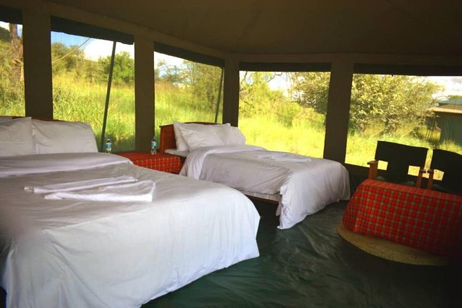 5 days serengeti, ngorongoro, tarangire & manyara lodge tour photo 3
