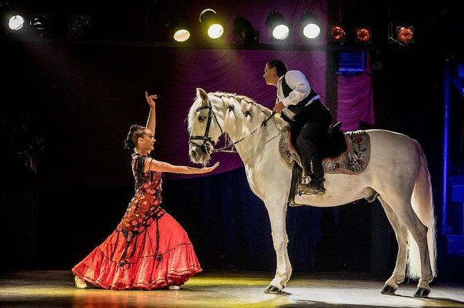 Dinner, Medieval & Flamenco Show in kasteel Valltordera (inclusief pendelbus)
